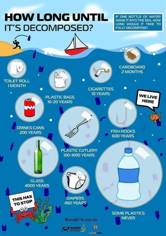 How-long-does-it-take-for-plastic-to-decompose.jpg