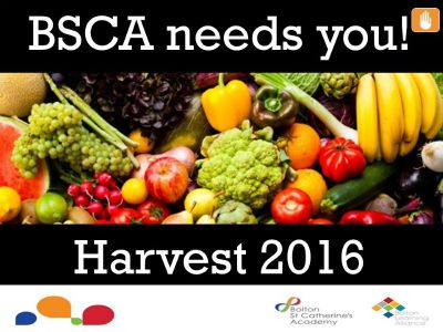 Harvest Festival at BSCA